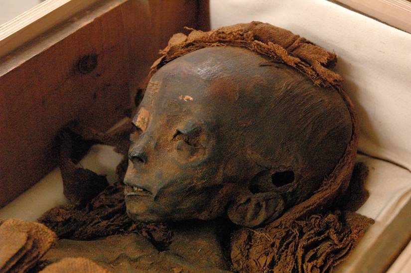 Real Egyptian Mummy