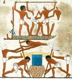 Wine making. Source: Lepsius